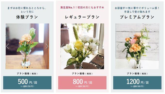 bloomeelife_プラン1