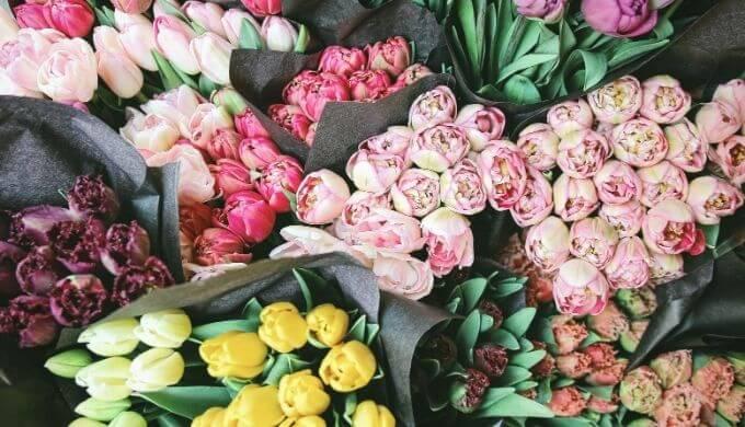 お花の写真3